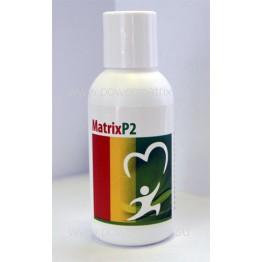 Matrix P2