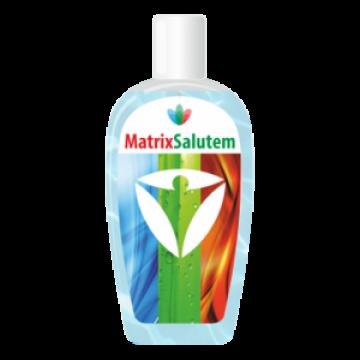 MatrixSalutem